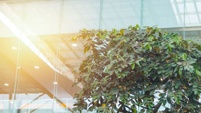 Importance of environmental credentials grows for property investors: Savills