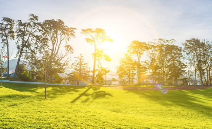 Pressure mounts to assess the future of golf course land: Savills