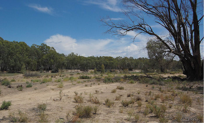 Australia's drought relief package hits the political spot but misses the bigger point