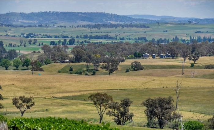Central and Western NSW rural market maintains reasonable levels of interest: HTW