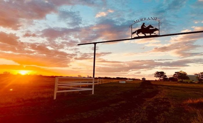 Murranji Station, Northern Territory cattle property listed