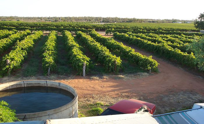 Mildura region holding value thanks to resilient agricultural sector:  HTW rural