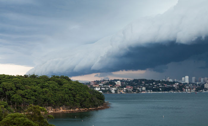 Get set for the four elements of the perfect property storm to be struck down: Hotspotting's Terry Ryder