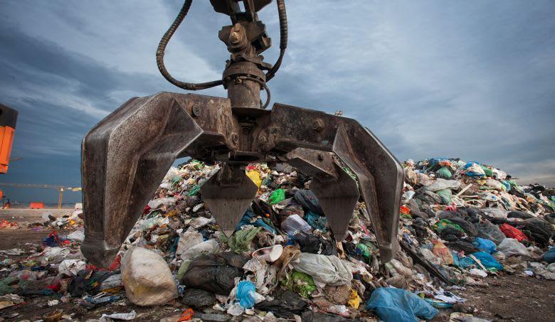 Sustainability & Environment