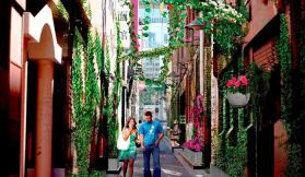 Get your green on for a new CBD laneway experience