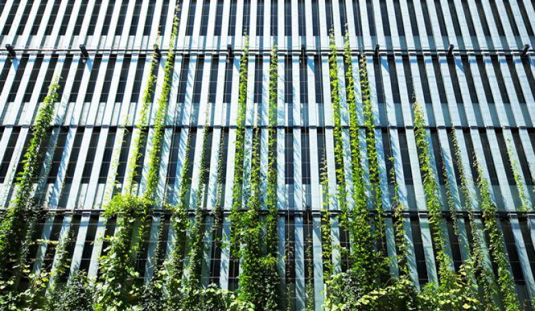 Image © tensile.com.au