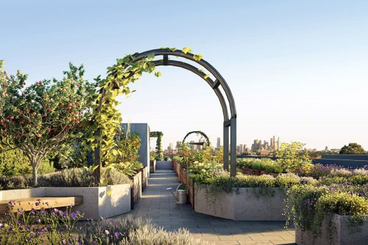 Rooftop garden with vegetable plots and communal spaces.