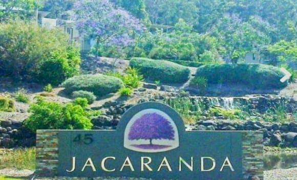Jacaranda's ablaze in property offerings
