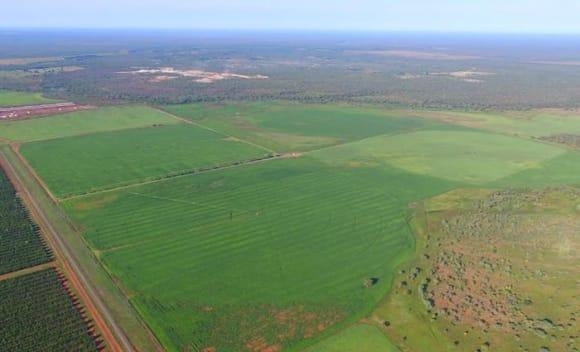 NT rural market heats up with  million of sales: HTW