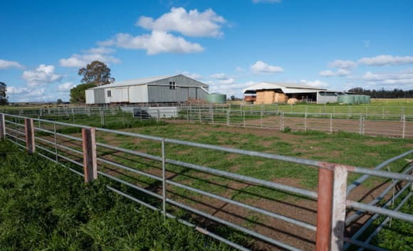 River Murray District Merran Vale and Cooinda Park properties listed