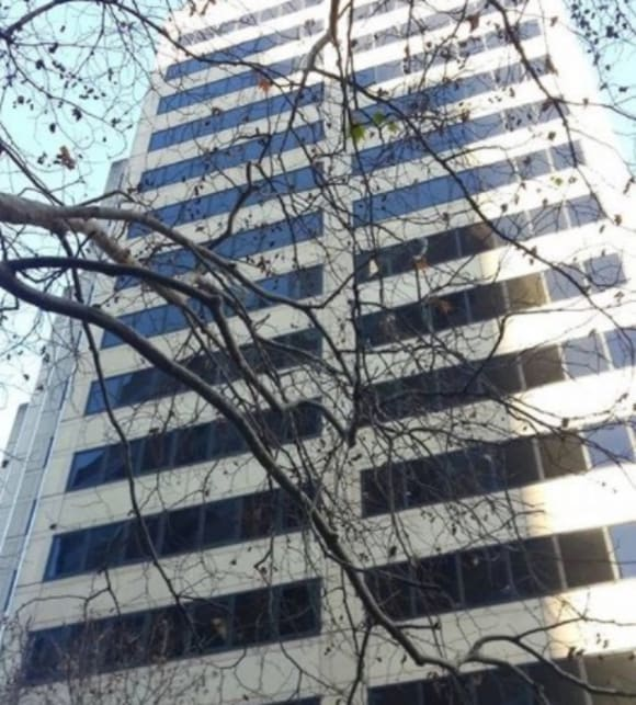 Telstra House in Sydney's Elizabeth Street offered for sale