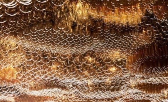 Studio Ongarato take out best ceiling design award for Jackalope Hotel restaurant