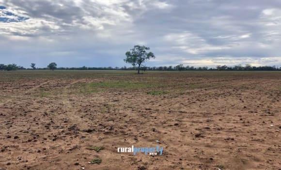 Barnaby Joyce lists 1000 ha Gwabegar property, Yarrandinbine
