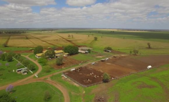 Dalby mixed farming opportunity hits the market