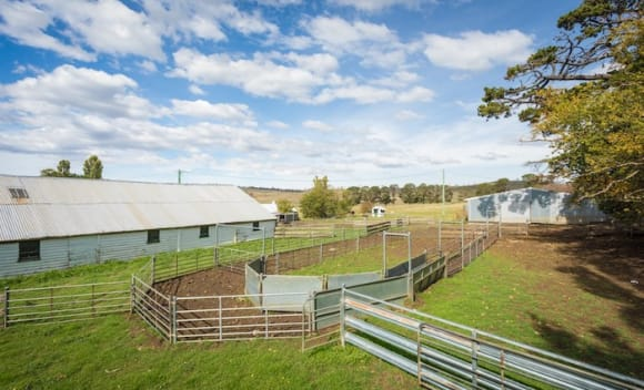 Curry Flat, historic Monaro NSW grazing property sells for .63 million