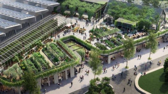 Urban rooftop garden. Credit: Burwood Brickworks