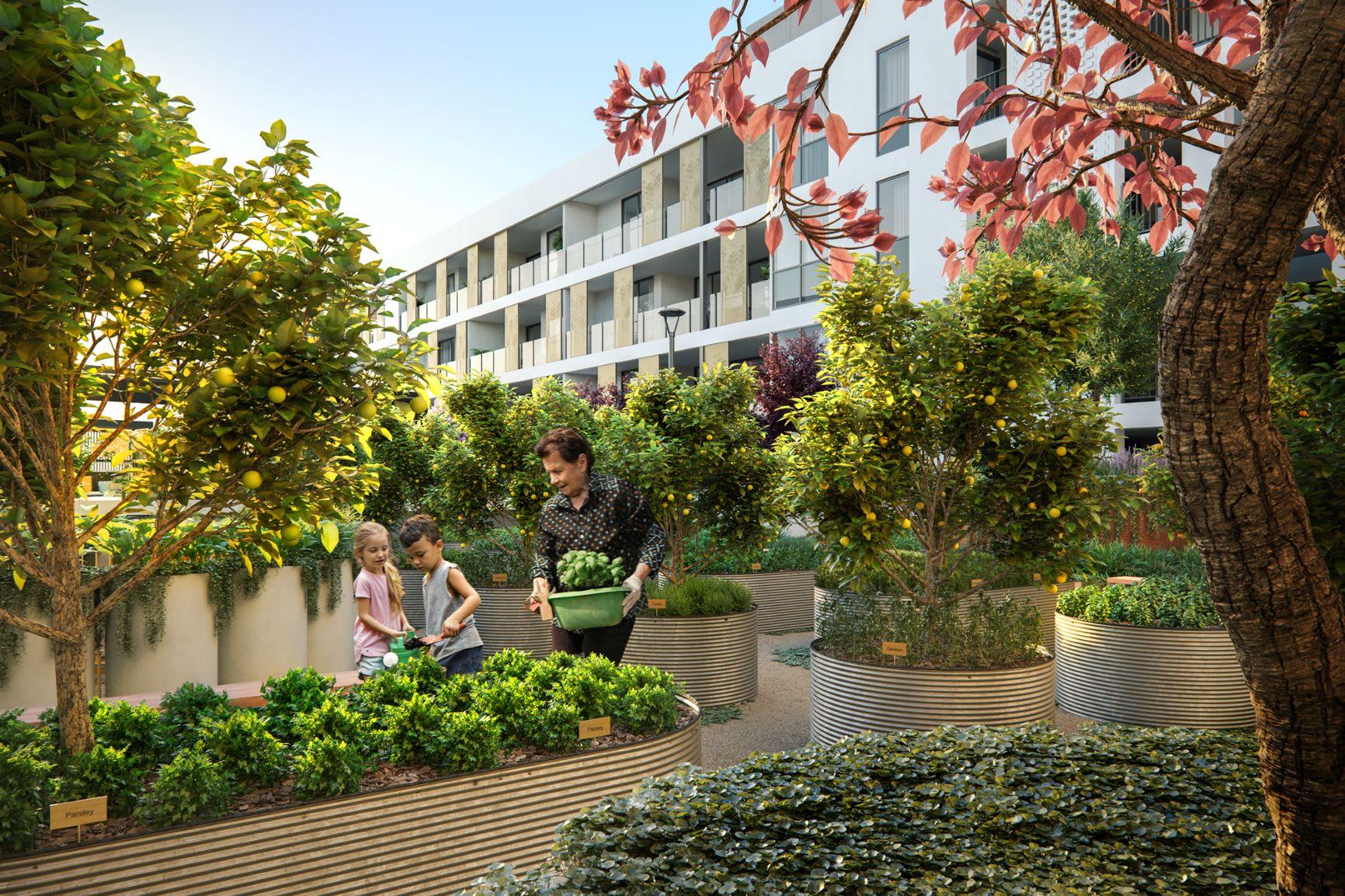 Design brief: Design scheme options for Shenton Quarter, Shenton Park apartment buyers