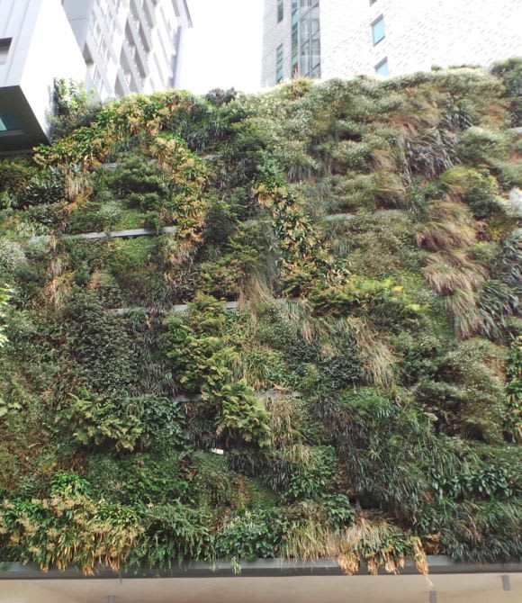 Designing and building green is one thing, but what comes next?