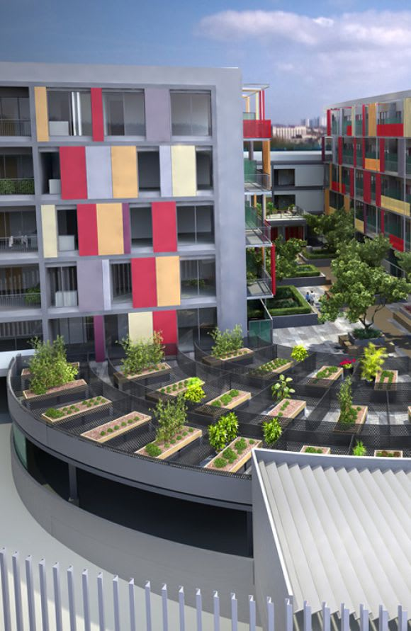 Roof-top farming: Part of the future of inner-city living