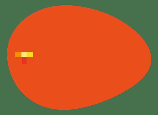 fpef medida iv +competencias