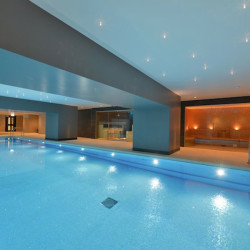 Arrdevpools Basement Hydrotherapy Pool basement-hydrotherapy-pool.jpg