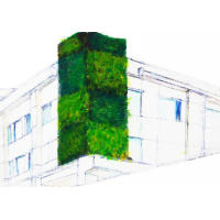 EltIndia Outdoor Greenwalls