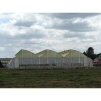 Greenhouses By Agriplast