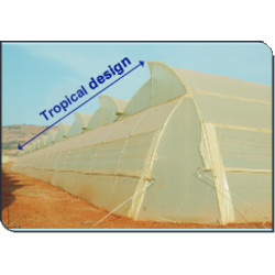 Indian Greenhouses Natural Ventilated IMAGE
