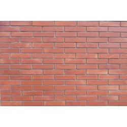 Pioneer Bricks Wall Brick Royal Bell - Terracotta        Royal Bell-T1.jpg