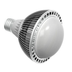 Sunlux Energy Private Limited Light Bulb
