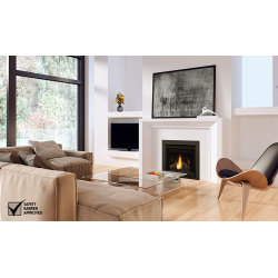 Napoleon Ascent 30 1100x656-main-product-image-b30-2-napoleon-fireplaces.jpg