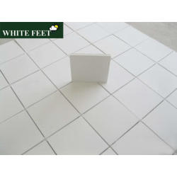 White Feet Gold Cool Roof IMAGE