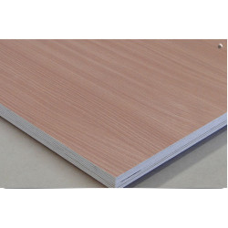 Maxi Plywood Maxi Film Birch Plywood