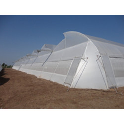 Indian Greenhouses Polyhouse Below Retractable Shadenet IMAGE