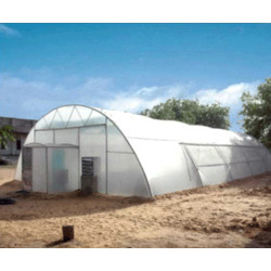 Agro Vision Greenhouse With Fan And Pad IMAGE
