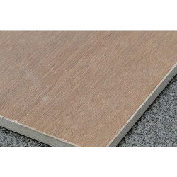 Maxi Plywood Falcata Plywood
