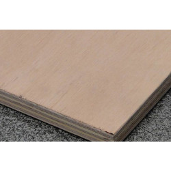 Maxi Plywood Exterior Hardwood Plywood