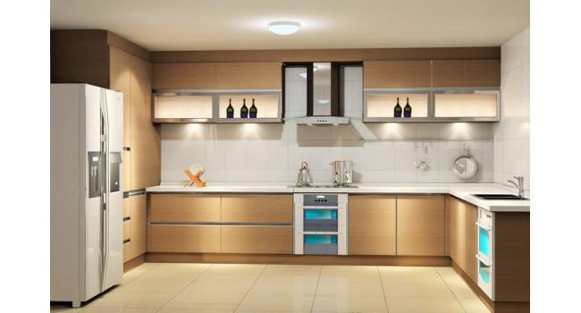 Modular Kitchens15