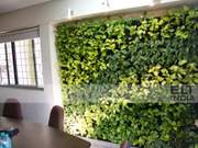 Living Wall with Foam