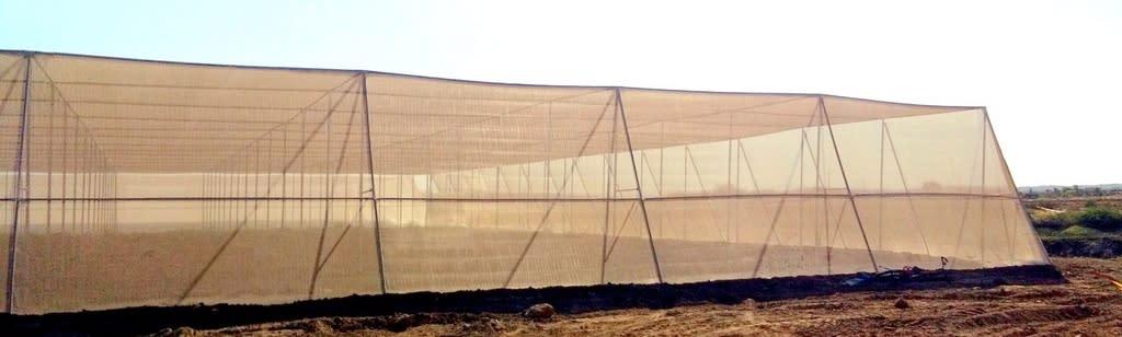 Flat Nethouse