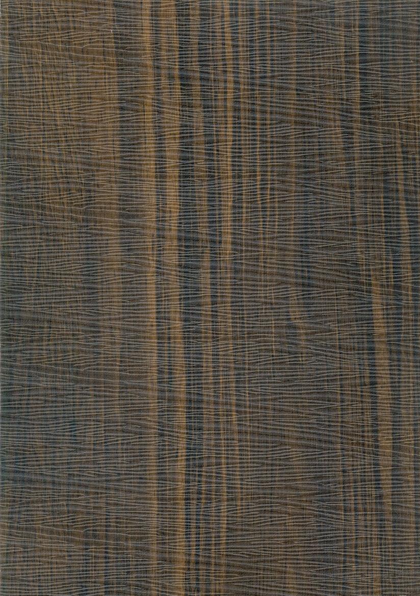 Cassatts Magellan 562