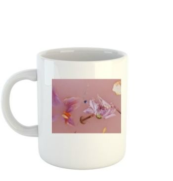 Harry Styles mug