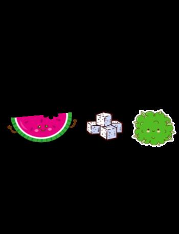 Harry styles - watermelon sugar T-shirt
