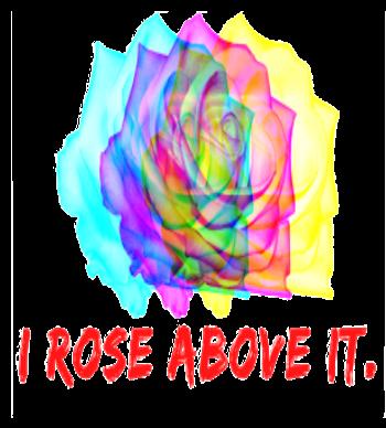 I rose above it.