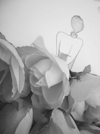 Bloom everyday
