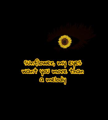 Sunflower, vol.6