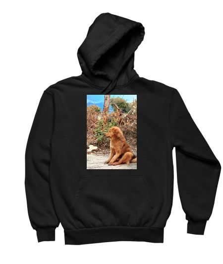 Cute Dog landscape