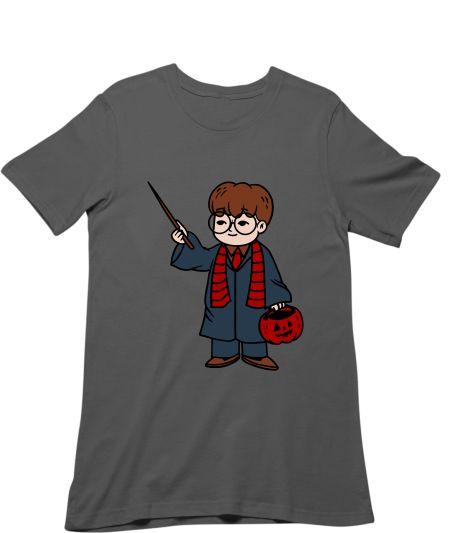 Little Harry Potter In Wizard World