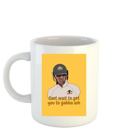 Tim paine- border gavaskar trophy to ashwin