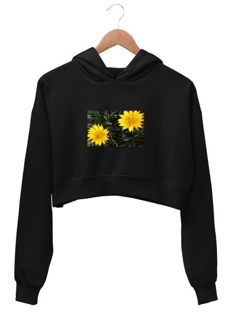 Sunflower Yellow Colour Art Design